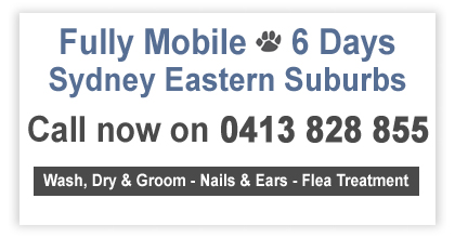 Mobile Dog Washing, Grooming, Sydney NSW